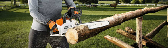 Stihl Electric and Cordless Chainsaws