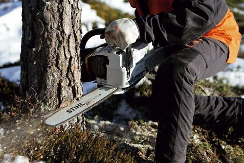 The Best Cordless Ellectric Petrol Chainsaws