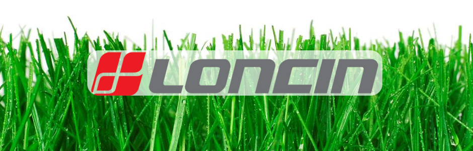 Loncin-Replacement-Engines-Parts