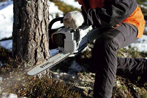 Stihl Petrol, Electric & Cordless Chainsaws