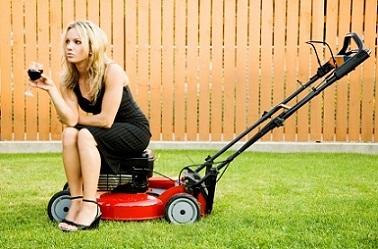Lawn Mower Repairs Hayling Island
